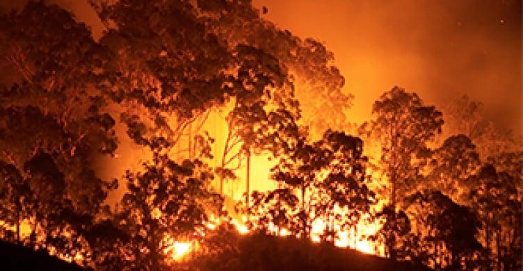 California Burning An Analysis Of The Summer 2015