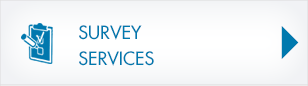 btn-survey-services.png